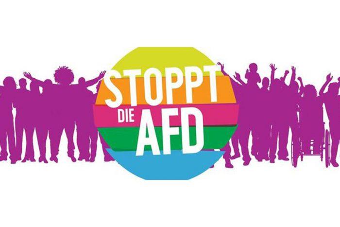 Protest Gegen Die AfD: Vorstandsmitglied Ludwig Striet Im Interview