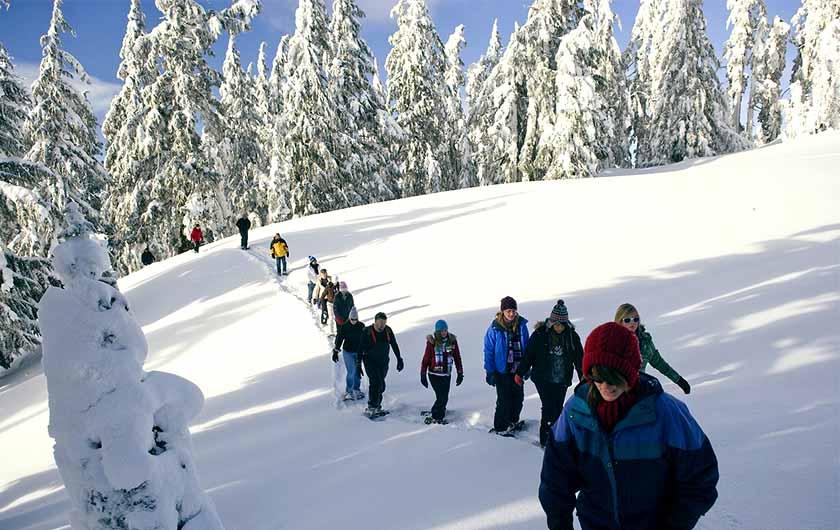 Snowshoe Walk 1251418 1280