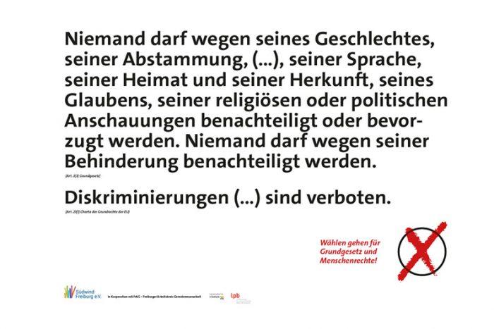 Wählen Gehen Für Grund- Und Menschenrechte